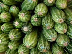 Pic of the day - Not Cucumbers, Not Squash