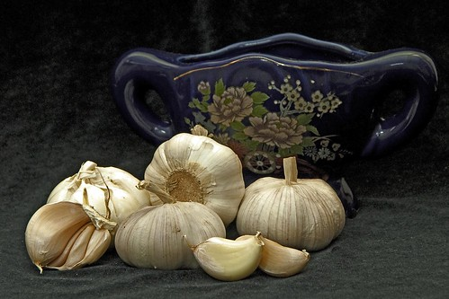 Garlic - Still Life