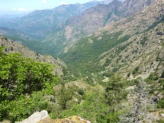 Sentier de la transhumance : vue de la vallée vers Monte Estremu