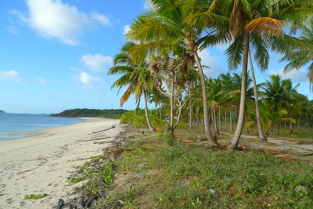 Badu Island Lilly Beach Flickr Photo Sharing