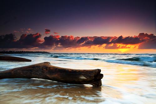 beach sunrise hawaii shannon kauai 5d canon5d canonef2470mmf28lusm circularpolarizer 2470mm lydgate gnd lydgatebeach bwcircularpolarizer lydgatestatepark graduatedneutraldensity cayze 5dmarkii canon5dmarkii shannoncayze hitech3stopgnd singhray3stopreversegnd