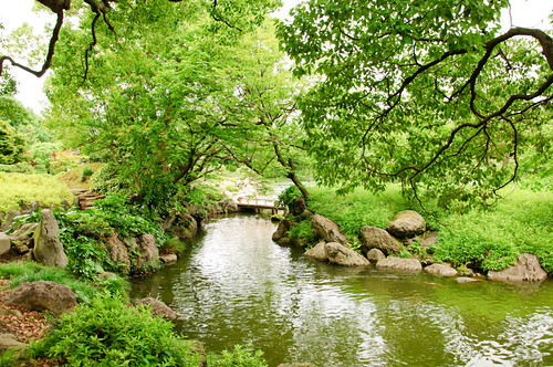 Fotojapon jardines kiyosumi for Lagunas artificiales para jardin