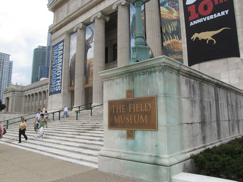 5 Chicago Attractions That Secretly Mix Learning and Play For Your Kids