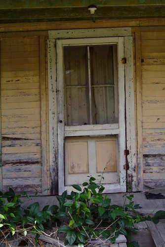 wood travel windows vacation usa green yellow farmhouse rural canon landscape photography town photo vines nikon doors fuji florida decay ghost country linden picture pasture photograph porch weathered fl orangecounty railings starkey deserted delapidated sr50 haintblue naturesreclaimation sumptercounty dwwg mikewoodfin