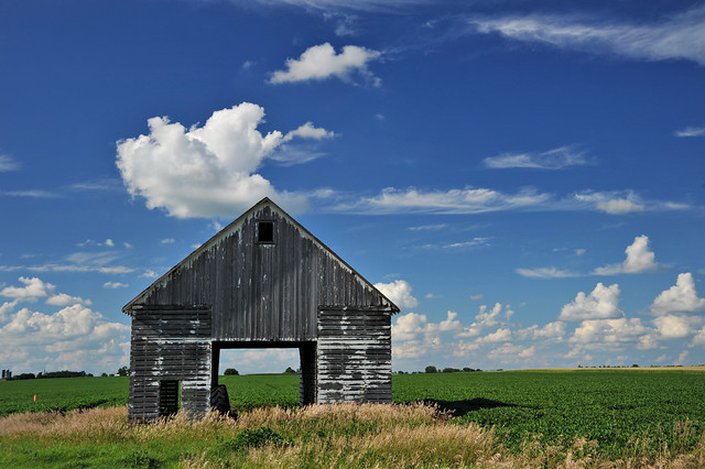 Corn Crib Definition Meaning