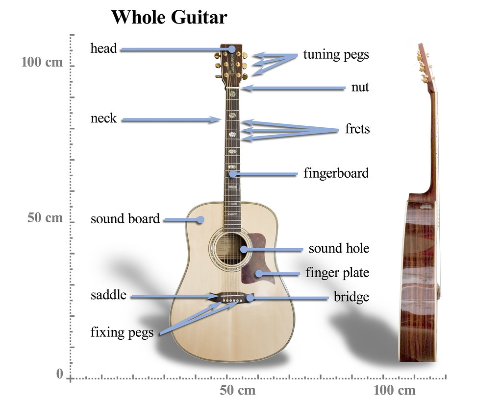 Tanglewood Steel String Acoustic Guitar Front And Side Views A Electricguitarcouk Lesson Electric Anatomy