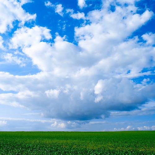 無料写真素材, 自然風景, 田園・農場, 空, 雲, 青空