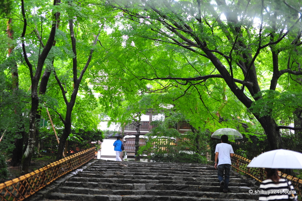 Climbing the stairs to the Temple