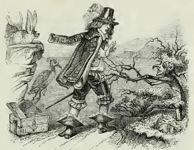 1207 Vespertilio, Mergus et Rubus