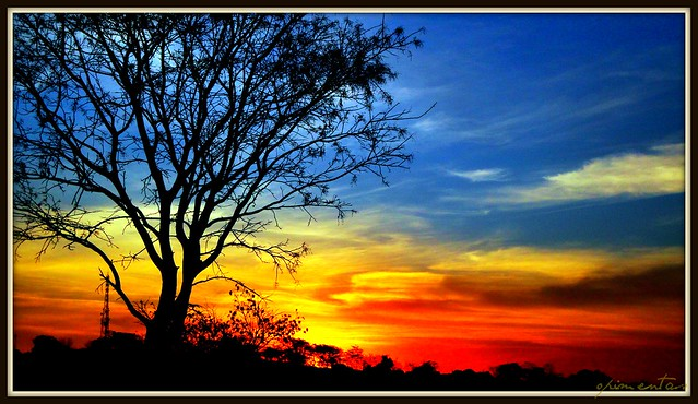 Sunset in Gyn