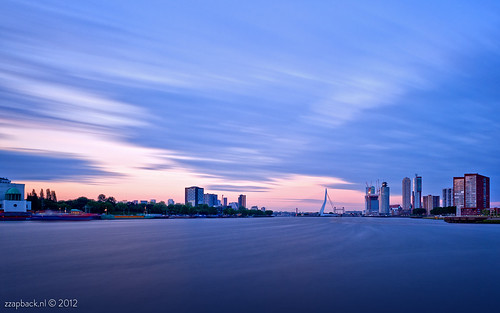 Movement... Rotterdam