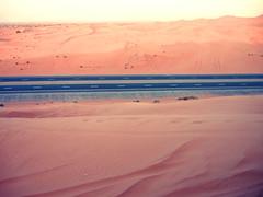 sea(0.0), plain(0.0), wadi(0.0), dawn(0.0), sunset(0.0), sunrise(0.0), erg(1.0), horizon(1.0), sand(1.0), aeolian landform(1.0), natural environment(1.0), plateau(1.0), desert(1.0), dune(1.0), landscape(1.0), sahara(1.0),