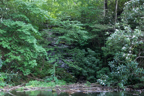 Big Branch Falls - 2