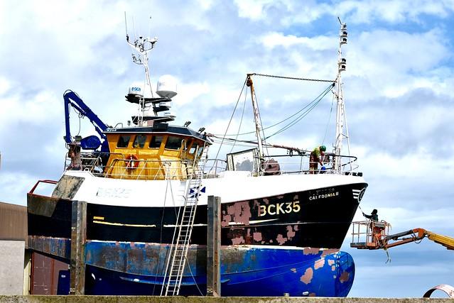 BCK35 Caledonia II Fraserburgh Fishing Harbour Scotland 2017