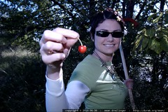 rachel picks her first cherry