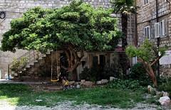 Recreational shade / Sombra recreativa