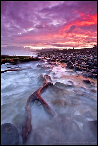 oregon sunrise canon landscape coast pacificnorthwest oregoncoast 1740l darrenwhite darrenwhitephotography 5dmkii