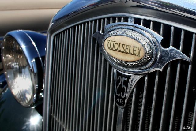 1937 Wolseley woody - green - badge