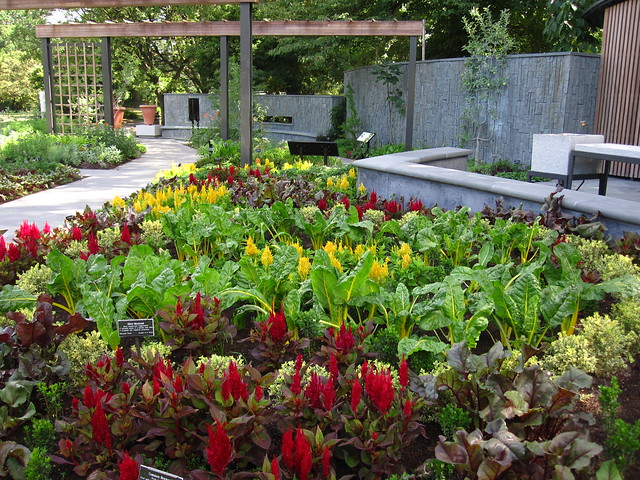 The Herb Garden. Photo by Rebecca Bullene.