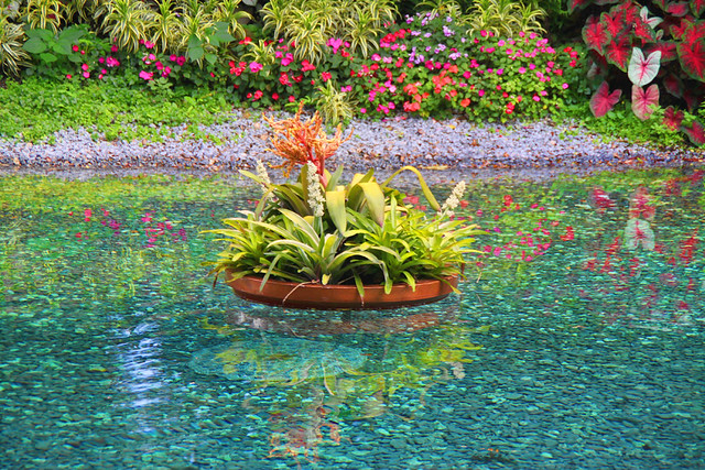 Floating flower pots and reflection flickr photo sharing for Floating plant pots