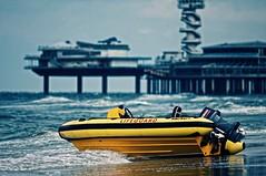 Lifeguard Scheveningen