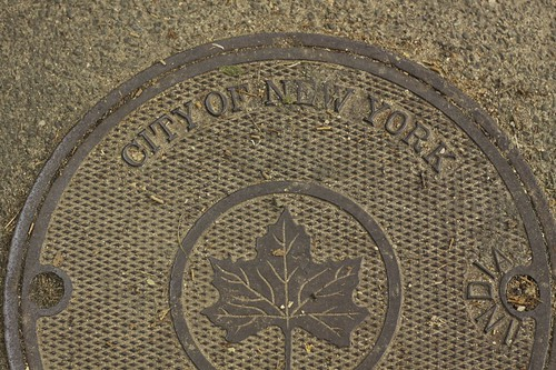 """""""City of New York"""" drain cover"""