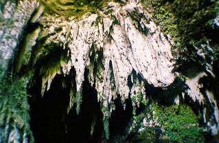 Camuy Caves - Camuy, Puerto Rico