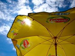 umbrella, yellow,