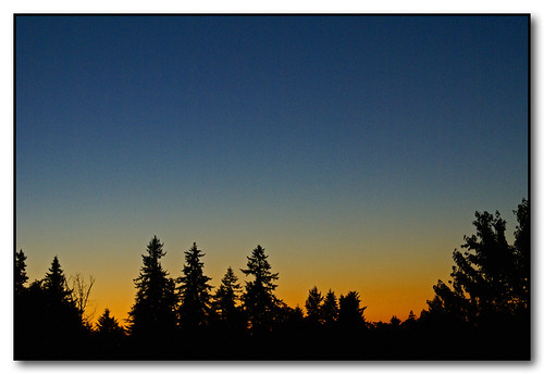 trees sunset sky silhouette oregon glow salem cloudless