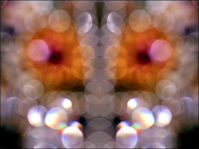 Kolazi 193    --- perle 02