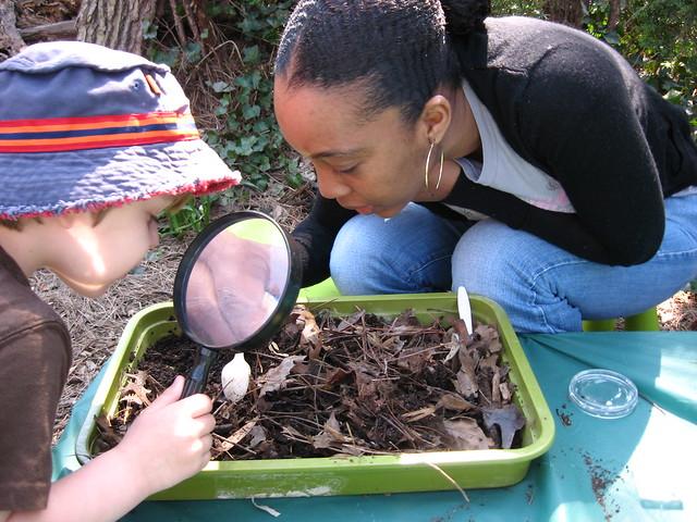 Волонтеров и посетителей поисках тварей опавшие листья во время весенних каникул Discovery Week. Фото Эшли Gamell.
