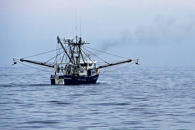 Commercial fishing boat business plan