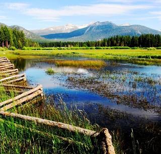 Mountain Meadow ,  LakeTahoe