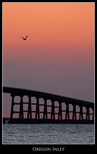 ocean sunset beach silhouette coast nc dusk pastel seagull gull northcarolina sound outerbanks obx bodieisland peaisland oregoninlet bonnerbridge