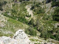 Sentier de la transhumance : arrivée sur le refuge de Puscaghja après Bocca di Caprunale