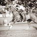 Most Interesting Rodeo Photographs