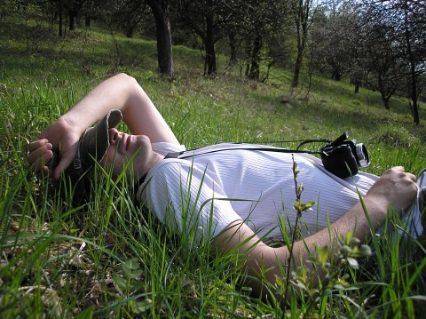 guy laying in the grass