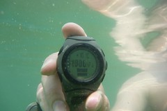 Seawater temperature: 10*C. Brrrrrr.