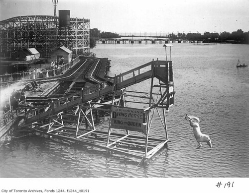 The diving horse at Hanlan's Point