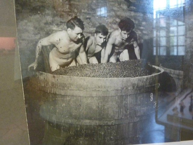 Making wine the old fashioned way in france flickr photo sharing