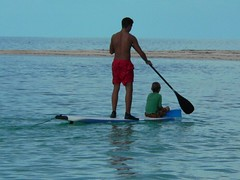 vehicle, sports, sea, water sport, stand up paddle surfing, surfboard, paddle,