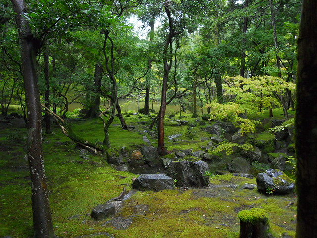 On the Grounds of Kokedera (Moss Temple) - Kyoto