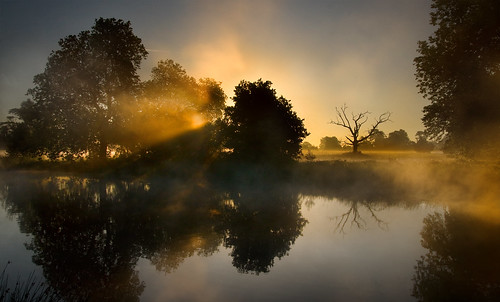 mist lake reflection misty sunrise dawn deadtree slough berkshire kevday tranquil langleypark