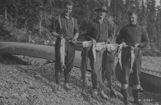 Three men pose with their trout caught in Christie Bay, Northwest Territories / Trois hommes posant avec les truites qu'ils ont pêchées à la baie Christie, dans les Territoires du Nord-Ouest
