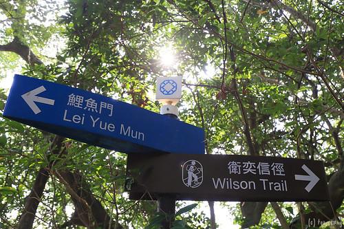 Wilson Trail