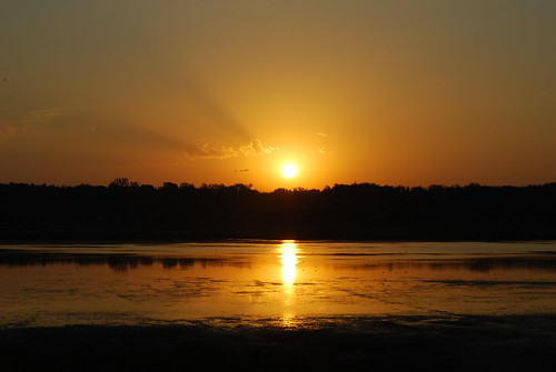 morning summer sky sun sunrise geotagged nikon midwest cone birding iowa summertime marsh birdwatching marshland d60