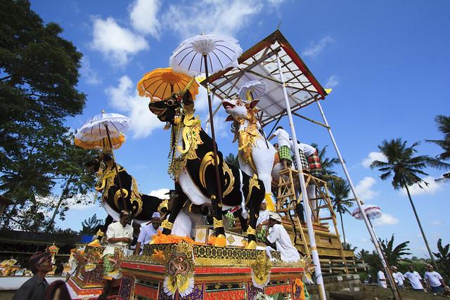 Bali Images : 3 Lembu on Royal Cremation of Ida Tjokorda Istri Winten from Puri Mengwi Badung