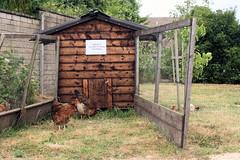 Tobacconist Farm