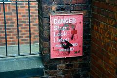 Stop, look, listen #194/365