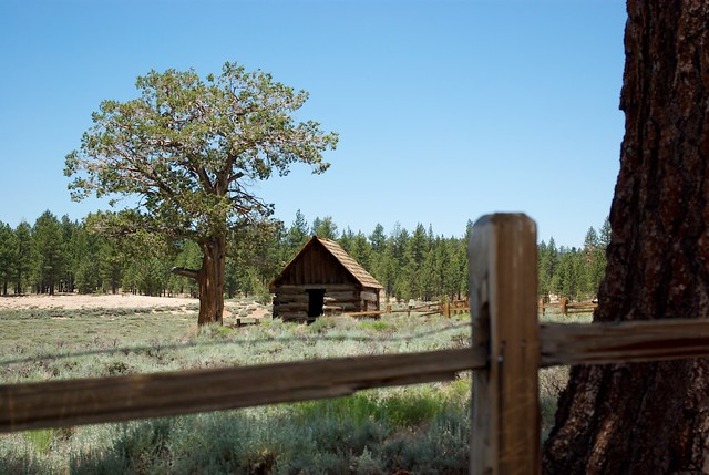 Fake Log Cabin Flickr Photo Sharing